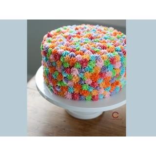 Fancy Cake 008